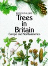 Trees in Britain, Europe and North America - Roger Phillips, John White