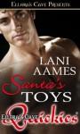 Santa's Toys - Lani Aames
