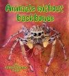 Animals Without Backbones - Bobbie Kalman