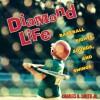 Diamond Life: Baseball Sights, Sounds, and Swings - Charles Smith