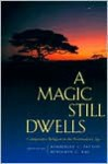 A Magic Still Dwells: Comparative Religion in the Postmodern Age - Kimberley C. Patton, Benjamin C. Ray