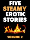 Erotic Stories for Women: Volume 2 (Erotica/Bondage/Bisexual/Threesomes/Couple Play! Hot Hot sex!) (Steamy Bedtime Stories) - Angela Gray