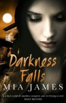 Darkness Falls (Ravenwood Mysteries) - Mia James