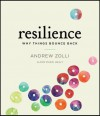 Resilience: Why Things Bounce Back - Andrew Zolli, Anne Marie Healy, Sean Runnette