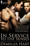In Service to the Senses - Demelza Hart