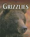 Grizzlies - Lynn M. Stone