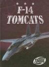 F-14 Tomcats - Jack David