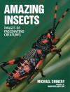 Amazing Insects: Images of Fascinating Creatures - Michael Chinery