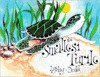 The Smallest Turtle - Lynley Dodd