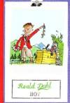 Boy - Quentin Blake, Roald Dahl, Donatella Ziliotto