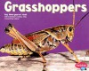 Grasshoppers - Margaret C. Hall