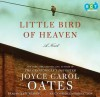Little Bird of Heaven - Joyce Carol Oates, Kate Reading