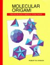 Molecular Origami: Precision Scale Models from Paper - Robert M. Hanson