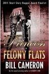 The Princess of Felony Flats - Bill Cameron