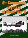 Air Commando Fighters of World War II - Edward Young