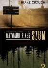 Wayward Pines. Szum - Blake Crouch