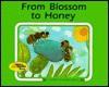 From Blossom to Honey - Ali Mitgutsch