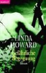 Gefährliche Begegnung - Linda Howard