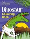 Dinosaur Colouring Book - Natural History Museum