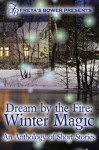 Dream by the Fire: Winter Magic - Esmerelda Bishop, Jenna Byrnes, Lanie Fuller, Ava Rose Johnson, Kelly Madden, Lyra Marlowe, Kim Rees, Emily Ryan-Davis, Fiona Shinn