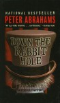 Down the Rabbit Hole - Peter Abrahams