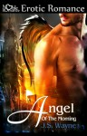 Angel Of The Morning (Angels Would Fall #2) - J.S. Wayne