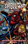 Spider-Man: The Complete Ben Reilly Epic, Book 6 (Amazing Spider-Man Collection (Marvel)) - Tom DeFalco, Todd Dezago, J.M. DeMatteis, Howard Mackie, Ron Garney, Steve Skroce, Mike Wieringo, Luke Ross