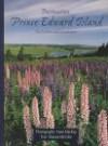 Destination Prince Edward Island: Its Culture and Landscapes (Destination (Paperback)) - Shauna McCabe, Anne MacKay