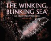 The Winking Blinking Sea:All About - Mary Batten