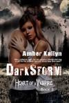 Darkstorm - Amber Kallyn