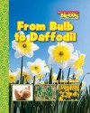 From Bulb to Daffodil - Ellen Weiss