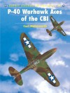 P-40 Warhawk Aces of the CBI - Carl Molesworth
