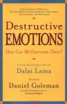 Destructive Emotions: A Scientific Dialogue with the Dalai Lama - Daniel Goleman