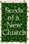 Seeds of a New Church - John O'Brien