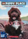 The Puppy Place #19: Baxter - Ellen Miles, Tim O'Brien