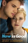 Now is Good (Also published as Before I Die) - Jenny Downham