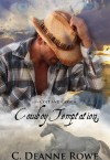 Cowboy Temptation (Colt and Cassy) - C. Deanne Rowe
