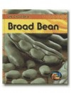 Life Cycle of A-- Broad Bean - Angela Royston