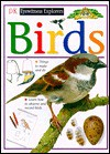 Eyewitness Explorers: Birds - Jill Bailey