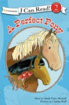 A Perfect Pony - Dandi Daley Mackall, Claudia Wolf