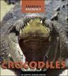 Crocodiles - Judith Jango-Cohen