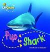 Pup To Shark - Camilla De la Bédoyère