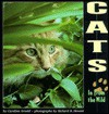 Cats: In from the Wild - Caroline Arnold