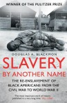 Slavery by Another Name: The Re-Enslavement of Black Americans from the Civil War to World War Two - Douglas A. Blackmon