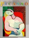 Picasso (Library of Great Painters) - Hans L. C. Jaffe, Pablo Picasso