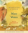 Many Waters - Madeleine L'Engle, Ann Marie Lee