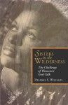 Sisters in the Wilderness: The Challenge of Womanist God-Talk - Delores S. Williams, Katie G. Cannon