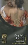 One Illicit Night - Sophia James