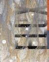 Flux: Architecture in a Parametric Landscape - Ila Berman, Andrew Kudless