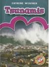 Tsunamis - Anne Wendorff